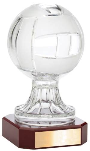 Championship Volleyball Trophy LC49B