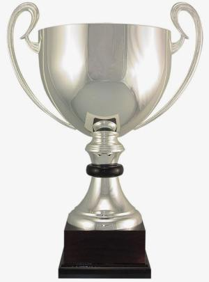 100-1 Silver Trophy Cup