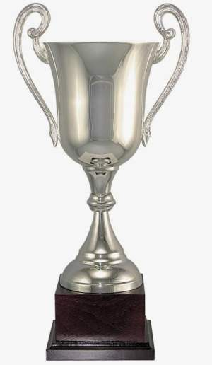 105 Series Silver Trophy Cup