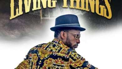 Photo of 9ice – Living Things