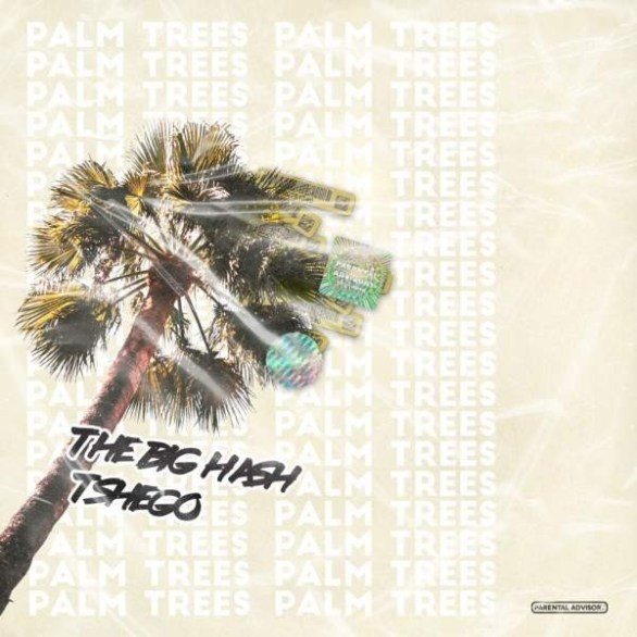 The Big Hash – Palm Trees ft. Tshego Music Tshego The Big Hash South Africa Hip Hop