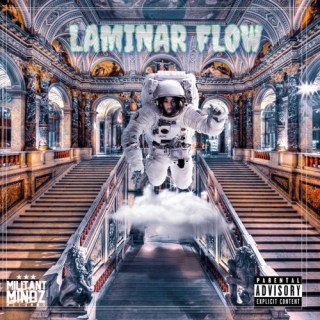 Dee Moneey laminar flow