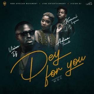 Vision DJ – Dey For You Ft
