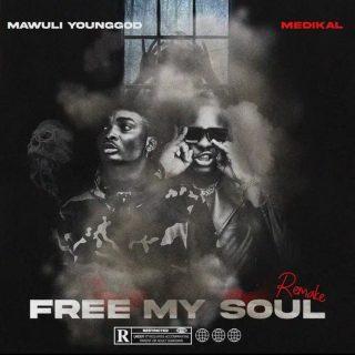 Mawuli Younggod Free My Soul Remix