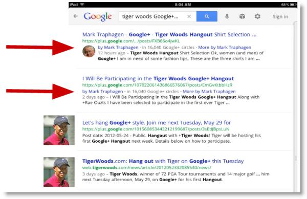 Google Plus Google Search Results