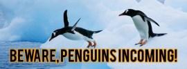 Penguin Featured Image
