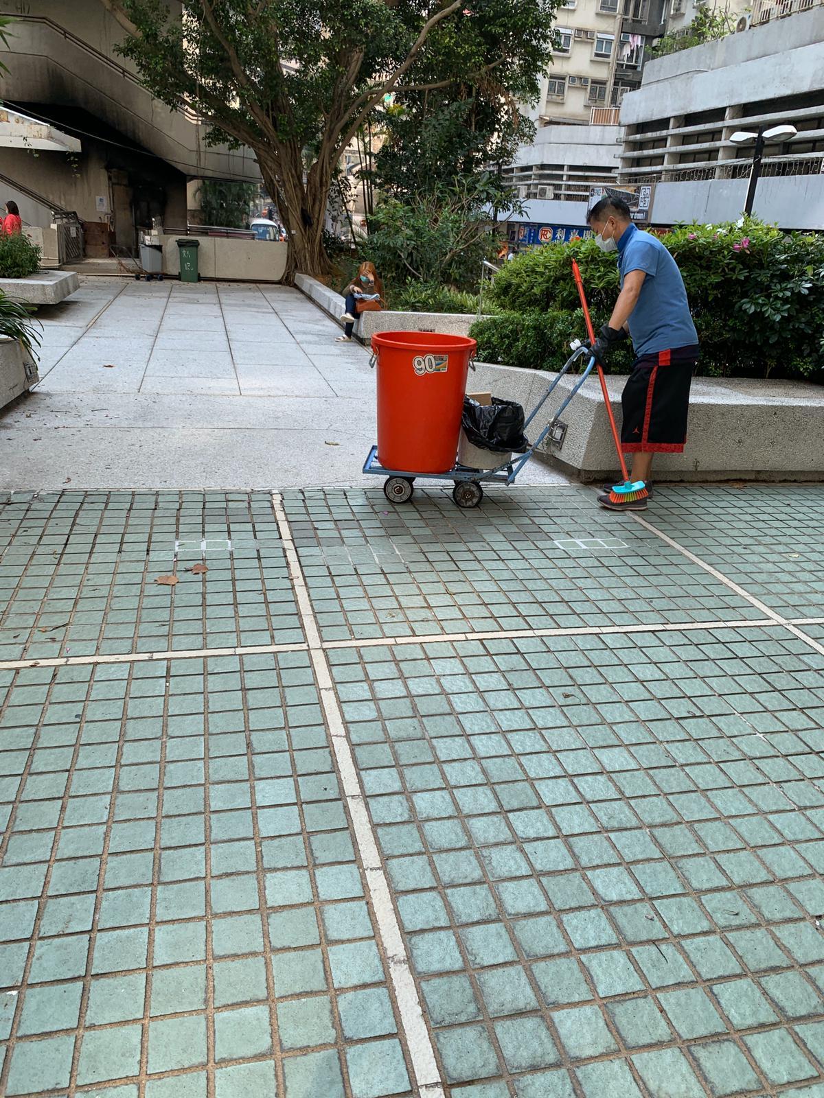 仇動物人士瘋狂投訴 城市花園被指用不明液體驅鴿 管理公司否認 | 香港動物報 Hong Kong Animal Post