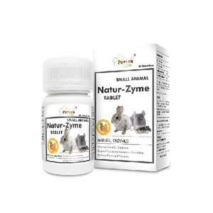 Petive Life 木瓜丸 Small Animal Natur-Zyme Tablet 60 Chewables