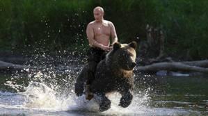 Putin medvjed