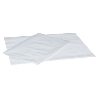 bolsa polietileno transparente g.100 20x30 cm