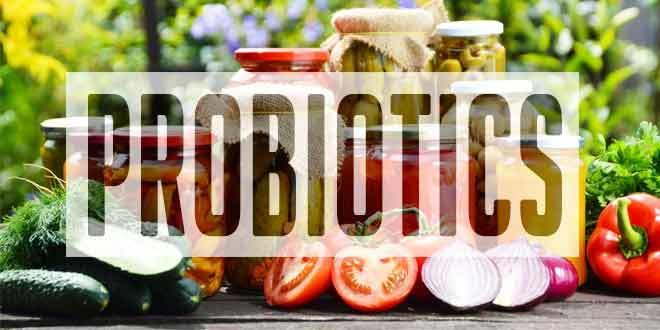 2016 Best Probiotics Foods Explained