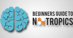 beginners_guide_to_nootropics_supplements_660x330px