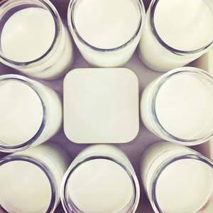 yogurt_probiotics_300x300