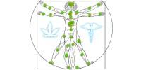 ENDOCANNABINOID-SYSTEM-ECS-EXPLAINED