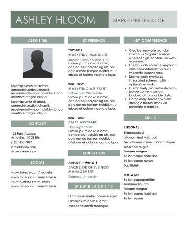 22 contemporary resume templates free - Contemporary Resume Templates