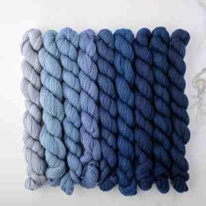 Appletons Dull China Blue 921 – 929 - 8-