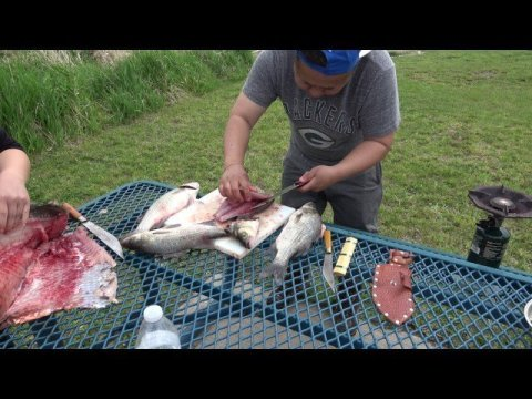Hmong Best cook of white bass ever MN/SD border