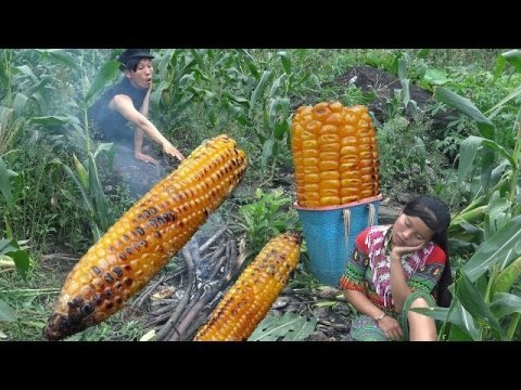 Survial Slkills Hmong -  Primitive life Finding natural food meets corn eating delicious