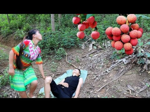 Survival Skills hmong - Primitive life finding fruit for food - Delicious fruit eating