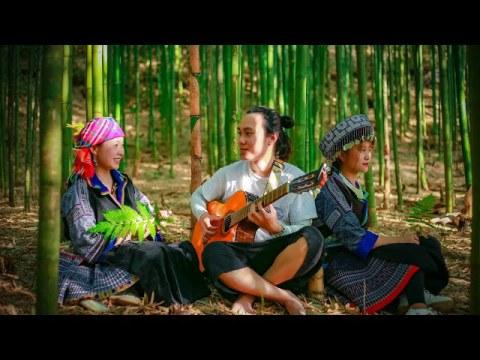 Chuyện Tình cô gái Hmong và chàng nghệ sĩ đến từ Hà Nội trong rừng Trúc - Mù Cang Chải- đang HOT