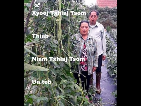 Hmong Fab kis ua teb - Xyooj Txhiaj Tsom thiab niam Txhiaj Tsom (FRANCE)