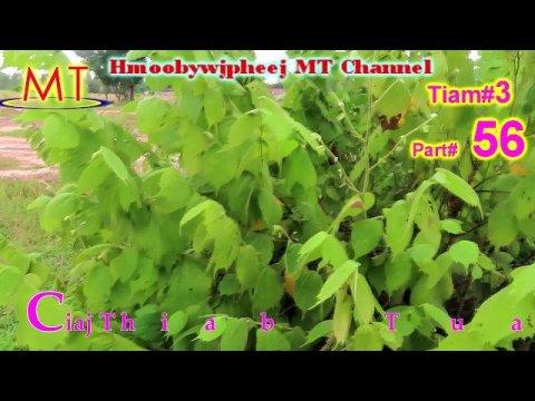 Tiam3: Part#56 Ciaj Thiab Tuag Los Yuav Hlub Koj Xwb(Hmong Sad Love Story)12/10/2020