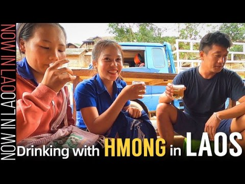 HMONG PEOPLE at Their BEST! | Hmong Food Hmong Drink Hmong Friends ❤ Now in Lao 2020