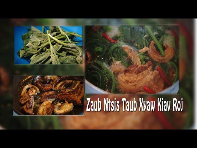 Hmong Zaub Ntsis Taub Xyaw Kiav Roj