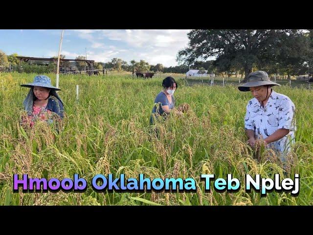 Hmong Oklahoma Teb Nplej