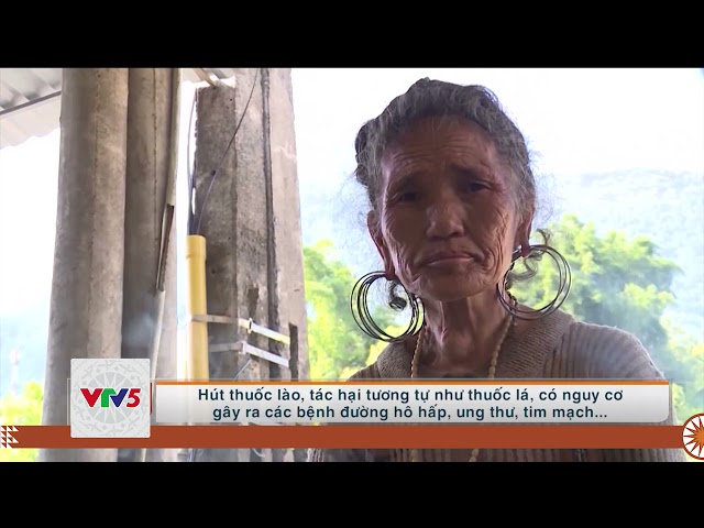 [TIẾNG MÔNG] MÔ HÌNH DOANH NGHIỆP KHÔNG KHÓI THUỐC | VTV5