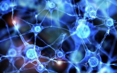 HNF – Acceleron Pharma Collaboration Highlights