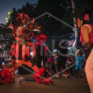 Bocas del Toro Carnival Devil