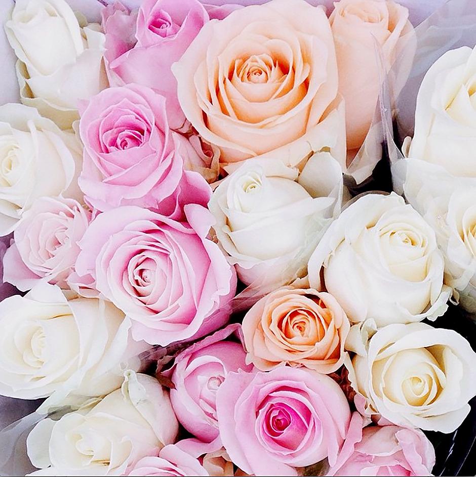 7things_10_roses