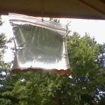 Picture about Hanging Zip-Lock Water Bags with Pennies will Keep Flies Away