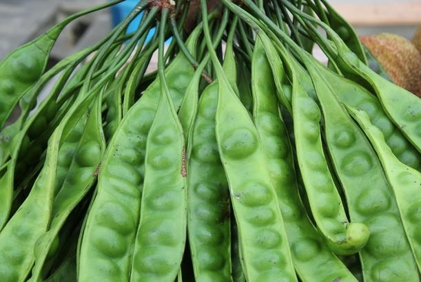 Picture about Glorious Health Benefits of Bitter (Petai) Beans