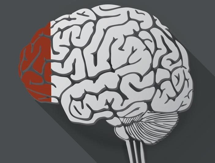 Picture about Humans Use Only 10 Percent of their Brains Myth