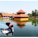 Picture about Kerala Ananthapura Lake Temple Guarded by a Vegetarian Crocodile