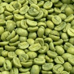 Picture about Pure Green Coffee Bean Extract is Effective for Weight Loss