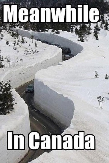 Picture of Snow Canyon Roadway