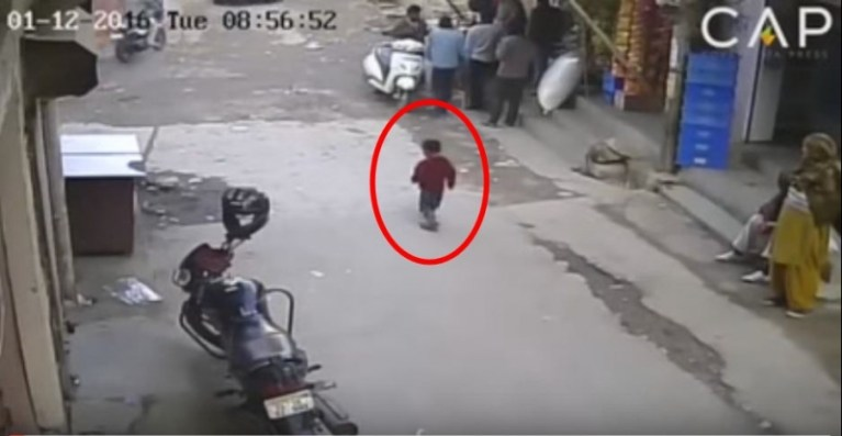Picture of Heart-Stopping Moment, Toddler Trips in Middle of Road, Has Miraculous Escape from Car Driven Over Her