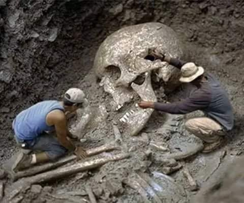 Discovery Channel Found 80 Feet Human Skeleton in India: Fact Check