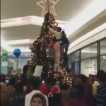 Picture Suggesting Muslims Attack a Christmas Tree in an American Mall, Video