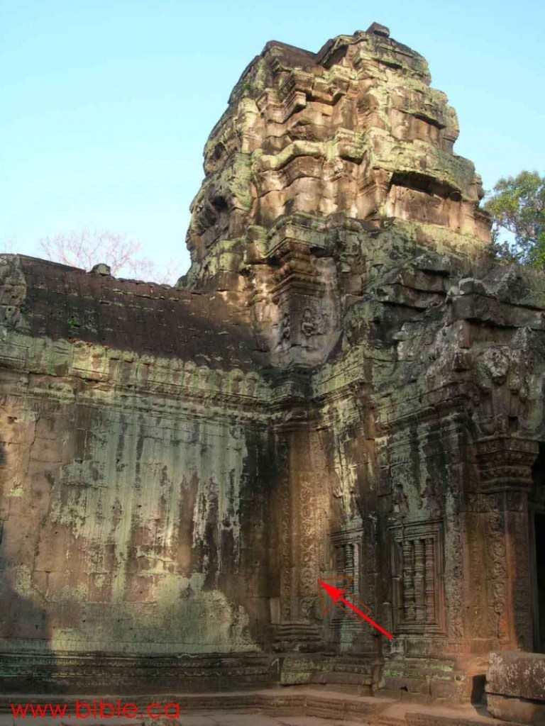 Picture of Ta Prohm Temple in Cambodia