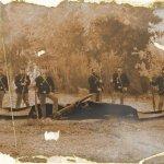 Old Photograph of Pteranodon Taken During Civil War