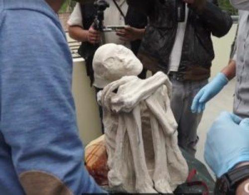 Picture about: Researchers Find Three-fingered Alien Mummy in Nazca, Peru