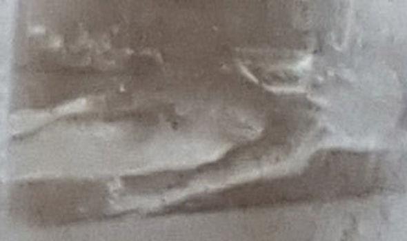 Alleged original still image of Alien autopsy