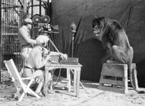 Picture: Recording Lion Jackie's roar, 1929.