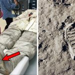 Picture: Neil Armstrong's Moon Footprints Don't Match His Spacesuit