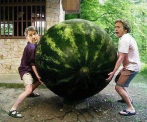 Another Photoshop: World's Largest Watermelon Picture