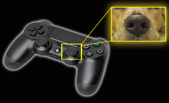 Picture about Killing Dogs Making PlayStation Controllers
